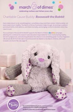 March of Dimes Charity Scentsy Buddy Coming March 1st 2014 #marchofdimes #scentsy #charitablebuddy www.smellascent.com