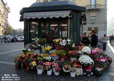 Flower kiosk in Milan Meu cantinho verde: Dicas Flowers For Sale, Love Flowers, Flower Bar, Flower Shops, Fancy Shop, Glass House, Kiosk, Window Coverings, Bike Food