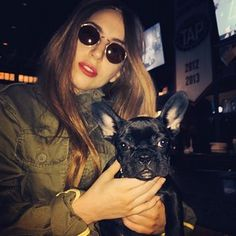 She's Lady Gaga's new French bulldog puppy. | Lady Gaga's New Puppy Is Insanely Adorable