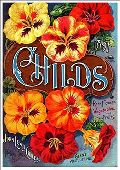 'John Lewis Childs - 1897' - Beautiful A4 Glossy Print Taken From A Vintage Seed Catalogue Cover by Design Artist http://www.amazon.co.uk/dp/B00L6X1MTI/ref=cm_sw_r_pi_dp_DBWnvb0NRFKNK