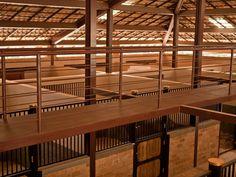 Haras do Drosa - Cavalos , stable