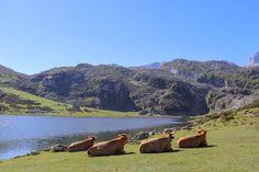 Asturias Spain, Location History, Del Mar, Beach
