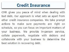 #CMR_Insurance_Services, a renowned credit insurance specialist in the UK, offers credit risk management services to help business owners start their business with no debt frauds.