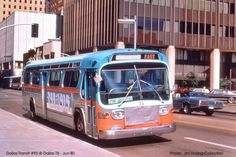 DALLAS TRANSIT we took the city bus as kids with my grandmother, we didn't have a car, Michelle L. Bedford, TX