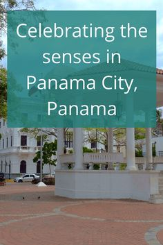Adoration 4 Adventure's recommendations for celebrating the senses in Panama City. A trip to indulge the sense of sight, smell, sound, taste, and touch.