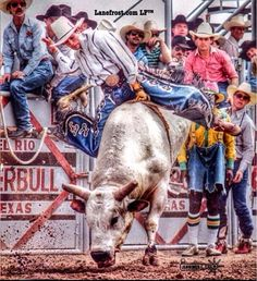 lanefrostbrandHere's Lane at Super Bull in Del Rio, #texas #LF #bulls #cowboy #lanefrostbrand #lanefrost photo by Bronco Dave Jennings
