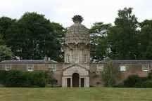 pineapple house