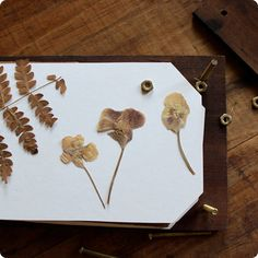 create a flower press. recycle wood from construction site.