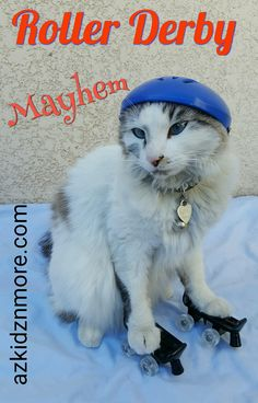 Roller Mayhem