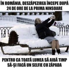Selfie, Haha, Humor, Comics, Memes, Funny, Movie, Ha Ha, Humour