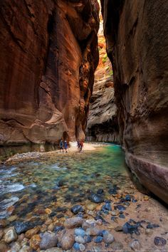 Walking long the Virgin river in Zion National Park - USA