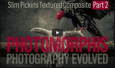 Slim Pickins Part 2 continues the assembly of the Skull and Vulture composite photograph.  Learn how to create this dramatic textured photo-composite in Photoshop. You can follow along with Doug Landreth using the free source files including all the photos, textures, and ACR preset used in the Slim Pickins Tutorial Video.