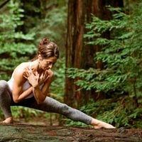 Inspired - Beautiful Yoga Poses - Grace Yoga