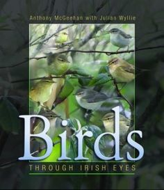 Birds: Through Irish Eyes by Anthony McGeehan with Julian Wyllie - The Collins Press: Irish Book Publisher Buy Birds, Irish Eyes, Exciting News, Bird Watching, Book Publishing, The Book, New Books, Wildlife, January 21