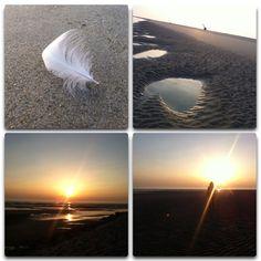Sunset, feather, beach, summer☀