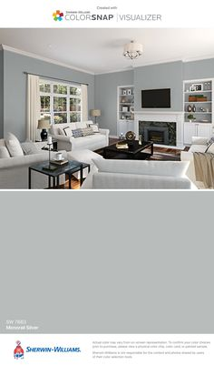 Paint color Sherwin-Williams: Monorail Silver (SW 7663)