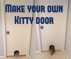 Kitty Door