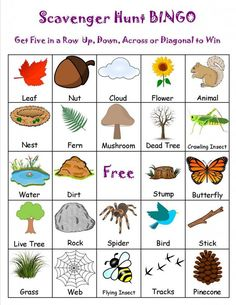 Image result for camping scavenger hunt list printable