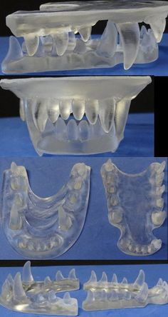 Clear Jawsets No LED by DreamVisionCreations on Etsy
