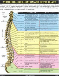 About Chiropractor Scott Jensen | Performance Chiropractic St George Utah