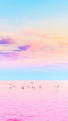 Nature wallpaper for mobile; Pastel wallpaper, the pink ocean, with blue sky, purple clouds and flying seagulls Ocean Wallpaper, Cute Wallpaper Backgrounds, Pretty Wallpapers, Pink Wallpaper, Colorful Wallpaper, Cute Summer Wallpapers, Colorful Backgrounds, Beautiful Nature Wallpaper, Beautiful Landscapes