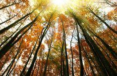 őszi mátrai képek - Google keresés