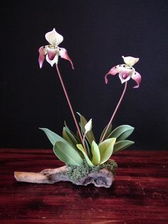 polymer clay lady slipper orchid
