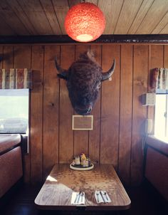 Bison head on wood paneling...adore this rustic diner.