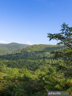 Graveyard Fields is a stream-filled valley framed in rolling mountains of the Pisgah National Forest