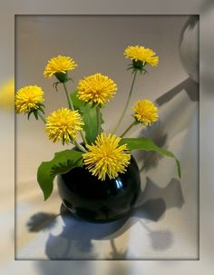 Dandelions. Two florals arrangements.Treat yourself and your family a holiday of spring all year round.Dandelions will create a sunny mood and will add warmth and comfort to your home.- See more at:  http://estrina.com/etc/es-user/u334/p375 #handmade #handmadeideas #flowers #dandelion #spring #springflowers #homedecor #estrina #ручнаяработа #одуванчик #хендмейд #хобби