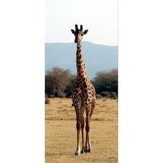 Fotomural Giraf Ft-0204