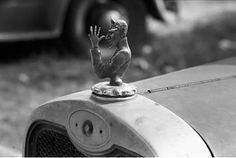 Shorpy hood ornament