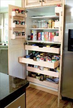 @Stacey Reali kitchen pantry - i like the drawers, too!
