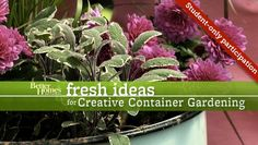 Containers add instant impact to garden spaces, inside and out. Learn pro secrets to beautiful floral and edible container gardens with this step by step tutorial program.