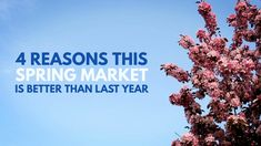 4 Reasons This Spring Market Is Better Than Last Year If you're looking to buy or sell a home this year, now is a great time! Let's get together today to go over what is happening in the Spring Market and what it means for you. Sell Your House Fast, Selling Your House, Real Estate Leads, Selling Real Estate, Real Estate Courses, Home Ownership, Looking To Buy, Make More Money, House Prices