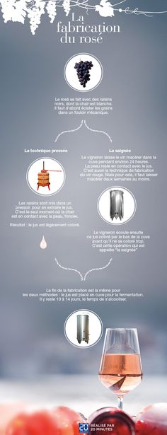 Comprendre la fabrication du rosé en une image - «20 Minutes» met le cap sur le vignoble bordelais - 20minutes.fr