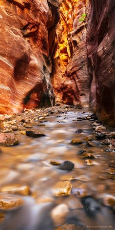 """Image taken in a southern Utah slot canyon...image is entitled, """"A Tall Cool Drink of Water"""""""