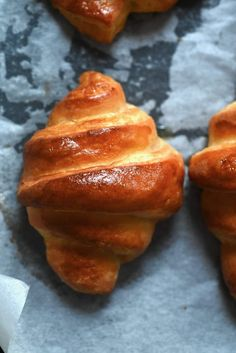 A simple but comprehensive guide on how to make croissants & pain au Chocolat at home - with plain and flavoured options! Vegetarian Snacks, Vegetarian Chocolate, Croissant Recipe, Croissant Dough, Homemade Croissants, Tray Bakes, Nutella, Breakfast Recipes, Simple