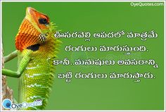Telugu Self Confidence Quotations and Messages images - Oye Quotes.com - Telugu Quotes