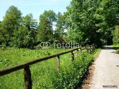 Weide am Barkhauser Weg zwischen Oerlinghausen und Asemissen am Gut Barkhausen