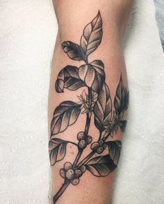 Black And Grey Coffee Plant Tattoo