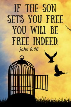 If the Son sets you free, you will be free indeed. (John 8:36)