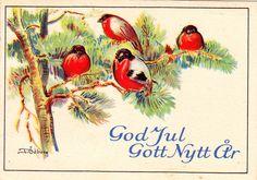 Kuva albumissa Tycho Ödberg - Google Kuvat Vintage Christmas Cards, Rooster, Stamp, Photo And Video, Animals, Painting, Google, Art, Animales