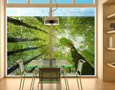 Window Mural Trees Of Life window sticker window film window tattoo glass sticker window art window décor window decoration Size: 8.3 x 12.2 inches >>> To view further for this item, visit the image link. (This is an affiliate link and I receive a commission for the sales)