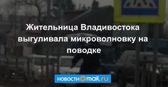 Жительница Владивостока выгуливала микроволновку поВладивостоку, сообщает РИА VladNews. Занесколько часов видеоролик набрал более 30 тысяч просмотров, аочевидцы даже вспомнили даму, выгуливавшую замороженную курицу летом.