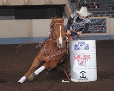 Bit Basics With Dena Kirkpatrick, Barrel Horse News