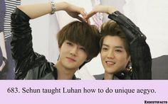 EXO Facts #683 ♥