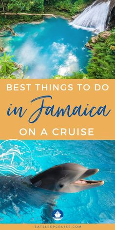 The Best Things to Do in Jamaica on a Cruise in 2021! I've always dreamed of going on a cruise to Jamaica! it is an unforgettable tropical vacation! Make the most out of your trip by checking out the top things to do while on a cruise to Jamaica! From ziplining through rainforests, epic waterfall climbs and cave exploration there is a ton of fun to be had! Plus amazing places to eat on your shore excursions, and, where to go to look at the local history. Plan your epic Jamaican vacation now!