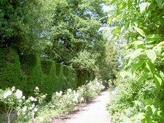 Spetchley Park Garden -Mieke Löbker- Picasa Webalbums