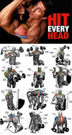 Workout-Schulter traf jeden Kopf – Carola Workout-Schulter traf jeden Kopf – Carola,Sport Workout-Schulter traf jeden Kopf – Related posts:The Workout to Have Ideal ABS in 30 DaysKiller ab workout-Killer ab. Gym Workout Tips, Weight Training Workouts, Biceps Workout, Fitness Workouts, No Equipment Workout, Workout Men, Traps Workout, Waist Workout, Biceps Training